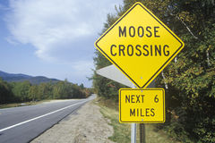 A sign for moose crossing Stock Photography