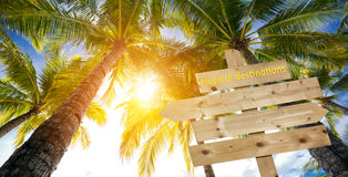 Sign, palm trees and tropical destinations Royalty Free Stock Images