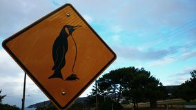 A Sign of Penguin Stock Image