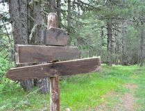 Sign post. A blank sign post in the forest Royalty Free Stock Photography