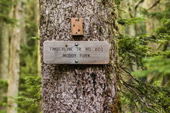 Sign post for trail 600 Muddy Fork Stock Photography