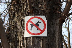 Sign prohibiting dog walking Royalty Free Stock Images
