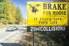 A sign that reads �Brake for Moose� royalty free stock image