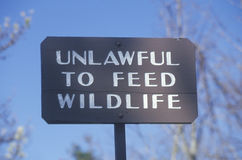 A sign that reads �Unlawful to feed wildlife� Royalty Free Stock Photos