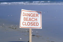 A sign reads danger beach closed Royalty Free Stock Image