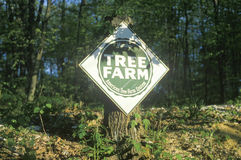 Sign reads tree farm Stock Image
