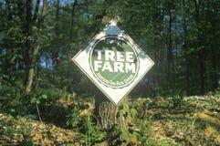 Sign reads tree farm Stock Image