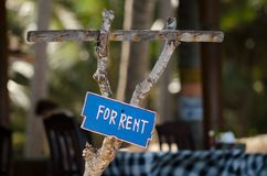 Sign for rent. Blue sign For rent on the wood royalty free stock image