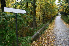 Sign on a road covered by leaves Stock Photo