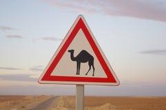 Sign in the Sahara. Track Tunisian Sahara in a sea of sand Stock Photo
