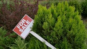 Sign `For sale` on the tree stock footage