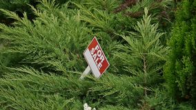 Sign `For sale` on the tree stock video footage