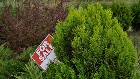 Sign `For sale` on the tree stock video
