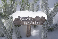 Sign Snow Fir Tree Buon Natale Means Merry Christmas Royalty Free Stock Photos