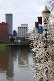 Sign of Spring, Portland Oregon. Royalty Free Stock Photography