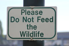 Sign stating Please Do Not Feed the Wildlife Royalty Free Stock Image