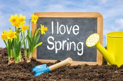 Sign with the text I love spring Stock Image