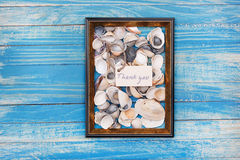 Sign Thank you with shells and photo frame. Vocation background Stock Images