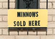 Minnows sold here stock image