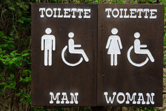 Sign toilette men women and disabled. Panel wood vector illustration