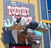 Sign of Toothy Moose. HALIFAX NOVA SCOTIA CANADA JUNE 3 2014: Sign of Toothy Moose is Mike Smith's (of Trailer Park Boys fame) third bar and this one features Stock Photography