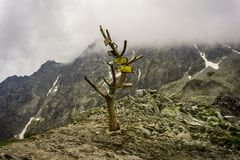 Sign of the trails in the mountains. Polsky Hreben. High Tatras. Slovakia stock photography