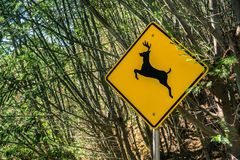 A sign warning drivers that deer may run across the road Stock Photo