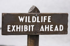 Sign WILDLIFE, EXHIBIT AHEAD Royalty Free Stock Images