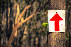Sign in woods Royalty Free Stock Photo