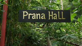 Sign with writing near tropical plants. Sign of facility for yoga and meditation with Prana Hall writing hanging near. Green exotic plants in garden stock footage