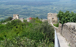 Signagi town fortress in Georgia, Kahety region, roofs and church tower on the background stock photo