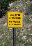 Signal d'avertissement : Grand croisement de moutons de klaxon Images libres de droits