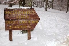 Signal en bois Photographie stock libre de droits