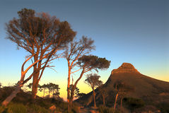 Signal Hill. Taken from Table Mountain at dawn Royalty Free Stock Image