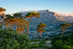 Signal Hill, Cape Town, South Africa Stock Photography