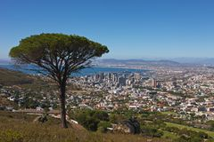 Signal Hill view. South Africa, Cape Town, seen from Signal Hill Royalty Free Stock Image