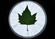 Signal lantern to call the autumn - by maple leaf. Royalty Free Stock Images