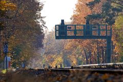 Signal at Railroad Tracks in Fall Forest Landscape Royalty Free Stock Images