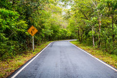 Signalez le juste de tour sur la route de campagne, signalisation Photo libre de droits
