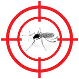 Signaling, mosquitoes with mosquito target gnat mira signal vector. Stock Photo