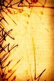 Signature Royalty Free Stock Image