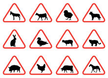 Signaux d'avertissement d'animal de ferme Photos libres de droits