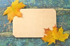 Signboard with Autumn Leaves Royalty Free Stock Photography