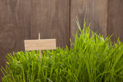 Signboard on Grass background of wood planks, Fresh green lawn n Royalty Free Stock Photography