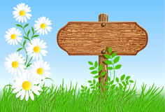 Signboard on the meadow with daisies Stock Photo