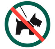 Signboard no dogs Stock Images