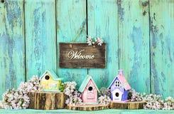 Signe bienvenu avec des volières et des fleurs Photos libres de droits
