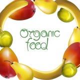 Signe d'aliment biologique Illustration de vecteur illustration de vecteur