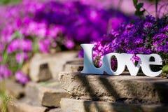Signe d'amour et fleurs pourpres Photos stock