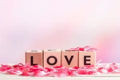 Signe d'amour fait de bois Photos stock